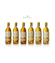 Collection d'Yquem 1990-1991-1994-1996-1998-1999